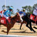 内地两部门规划提到,探索推广赛马运动。