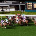 香港赛马有百多年历史,最早期马匹只有英文名。