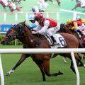 新一季赛马开锣日全日投注额破历年纪录达13.7亿港元。