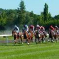 知情人士表示中央鼓励开展赛马运动并不等同于鼓励马彩,更不意味着开放赌马。